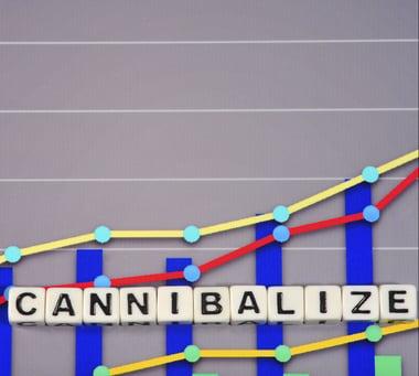 sales cannibalization