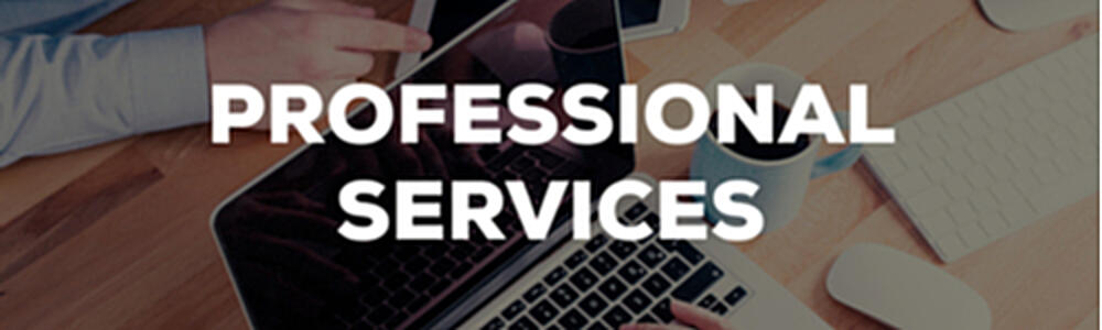 SiteSeer Professional Services